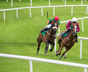 Two jockeys and race horses competing for position around the bend on the track