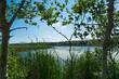 Framed View of Eden