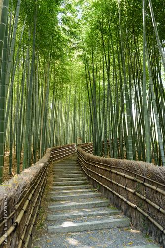 bambusowy-gaj-arashiyama-nenbutsuji-swiatynia-w-kyoto