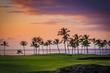 Hawaii Palm Tree Sunset 2