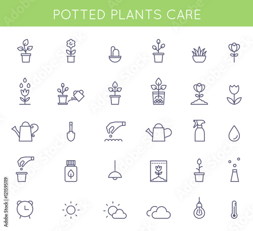 Garden And Potted Plants Care Instructions Icons And Pictograms