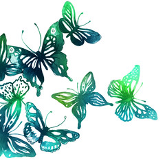 butterflies painted with watercolors