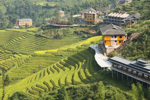 Yaoshan Mountain, Guilin, China hillside rice terraces landscape in China.