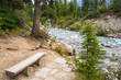 Split Log Bench by River in Mountain Forest Landscape
