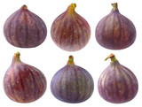 Collection of isolated fig fruits