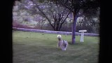 1961: dog playing with ball in the grass TOLEDO, OHIO