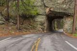 Road & Tunnel Scenic