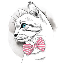 Portrait in profile of a cat with a bow. Vector illustration