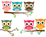 Vector Collection of Cute Cartoon Owls and Tree Branches