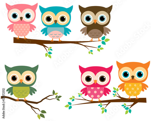 Staande foto Uilen cartoon Vector Collection of Cute Cartoon Owls and Tree Branches
