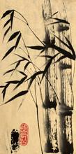 Zwei Bambus-Baum