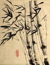 Original-Zeichnung von Bambus