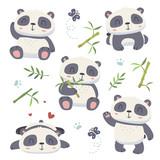 vector cartoon panda set