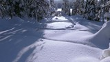 Sunny windless day. Blue sky. Winter forest. A lot of snow. Panorama from the bottom up