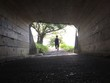 Runner exiting dark tunnel into summer light - 121762713