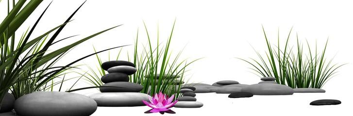 Trawa i kamienie z różową lilią wodną  © stryjgraf