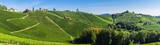 Weinberge in der Steiermark unter blauem Himmel