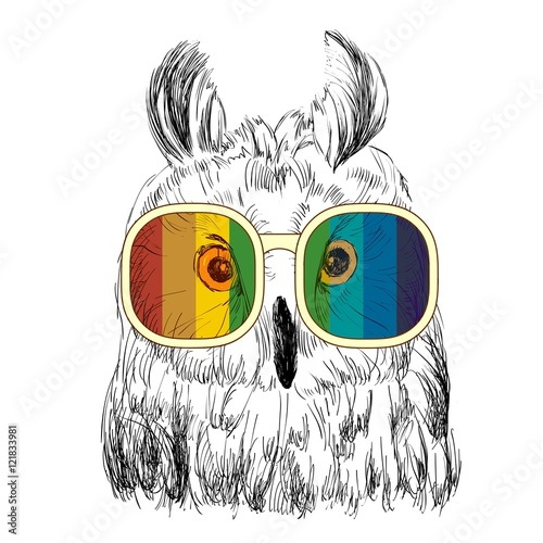 Foto op Aluminium Uilen cartoon Vector sketch of owls with glasses. Retro illustration