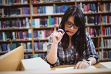 Female student looking at notes in library