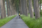 Forest Bacground , Men Cyclists