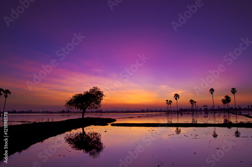 Plexiglas Violet Silhouette twilight sunset sky reflect on the water with palm tree landscape