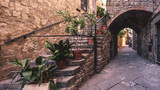 Old stairs and plants in the Italian city of Viterbo.