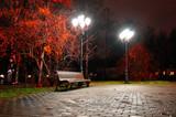 Autumn night city. Night autumn landscape of night autumn park.