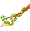 Cartoon green snake on branch - 122021711
