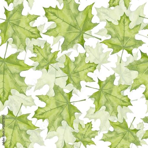 Fototapeta Green maple leaves. Watercolor painting. Seamless pattern. Background 8