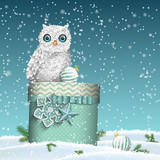 Christmas theme, white owl sitting on blue gift box in snowy landscape, illustration