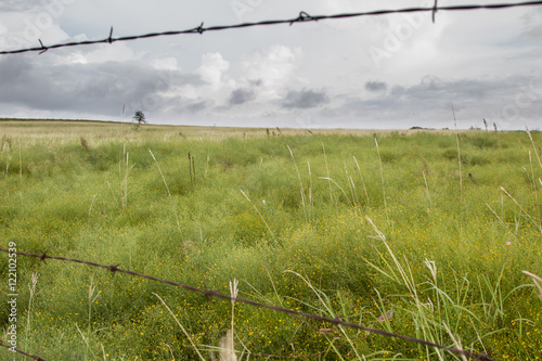 Poster Looking at green field through barb wire fence