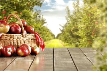fototapeta jabłka
