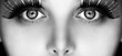 Eyes - 122143563