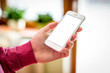 Man hand holding mobile smartphone. Bllank screen, isolated on blurred home interior.