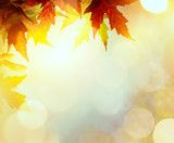 abstract nature autumn Background with yellow leaves - 122174536