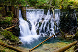 Fototapety Waterfall at the Vintgar gorge, beauty of nature, with river Radovna flowing through, near Bled, Slovenia.