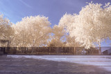 André-Citronën park in infrared