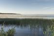 Edge of Marshland, Riding Mountain National Park, Manitoba, Cana