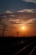 Silhouetted Telegraph Lines at Sunrise