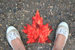 Lady's feet surrounding a canadian flag made with real autumn maple tree leaves.