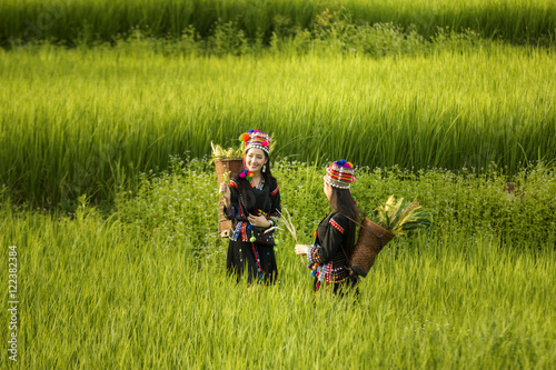 Poster Tribal Girls happy smiling in rice fields.