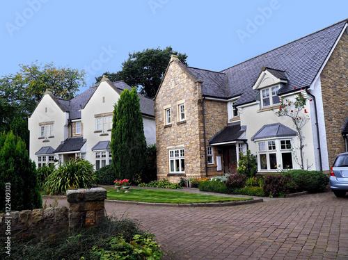 Poster English suburban houses