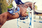 Equestrian sport image. Show jumping competition - 122468573