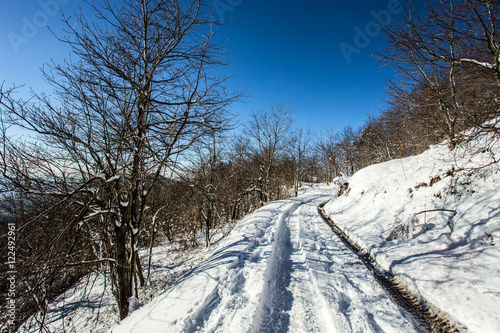 Snow-covered road in forest between mountains/ snow/white/ road/street/mountains Poster