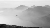Paraglider in action, bw - 122535105