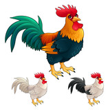 Group of funny roosters in different colors