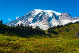 Summit of Mount Rainier above high meadows