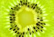 Fresh Kiwi background / SuperMacro / back lit