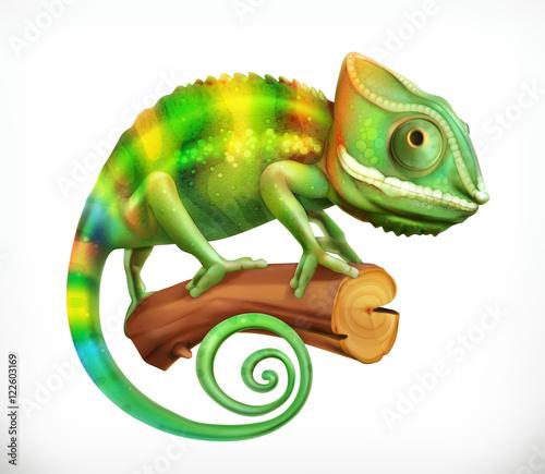 Kameleon. 3d ikona wektor