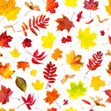 Autumn background. Fallen leaves seamless pattern